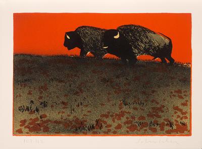 Artist: Fritz Scholder, American, 1937-2005