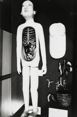 Wooden Anatomical Model; Zoe Leonard; American, born 1961; 2017.136