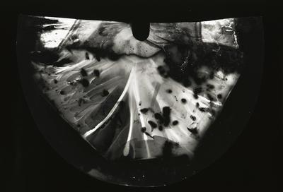 Artist: Steven Pippin, British, born 1960
