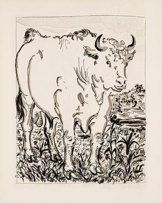 Le Taureau (Bull) from Eaux-Fortes Originales pour Textes de Buffon; Pablo Picasso; Spanish, 1881-1973; Georges L.L. de Buffon; French, 1707-1788; 1977.19.3