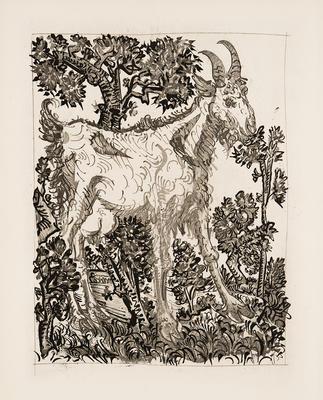 La Chevre (Goat) from Eaux-Fortes Originales pour Textes de Buffon; Pablo Picasso; Spanish, 1881-1973; Georges L.L. de Buffon; French, 1707-1788; 1977.19.8
