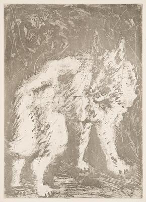 Le Loup (The Wolf) from Eaux-Fortes Originales Pour Textes de Buffon; Pablo Picasso; Spanish, 1881-1973; Georges L.L. de Buffon; French, 1707-1788; 1977.19.10