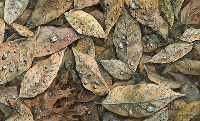 Artist: Patrick White, American, born 1963
