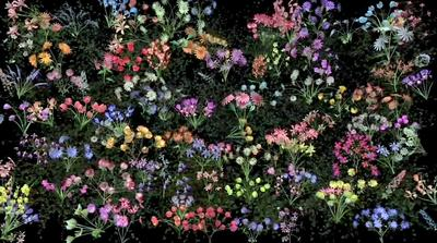 Artist: Jennifer Steinkamp, American, born 1958