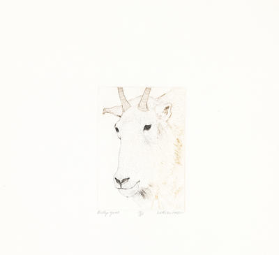 Billy Goat from Animals Suite