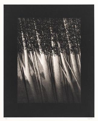 Artist: Robert Kipniss, American, born 1931