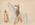 Artist: Silver Horn, Native American, Kiowa, 1860-1940